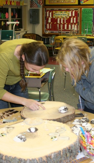 tree rings at Science night